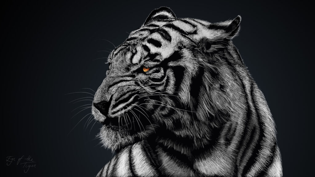 tiger aesthetic wallpapers