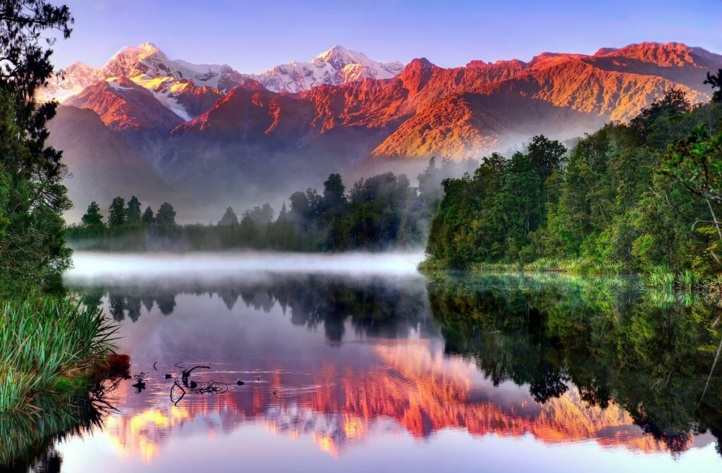 river forest nature wallpapers