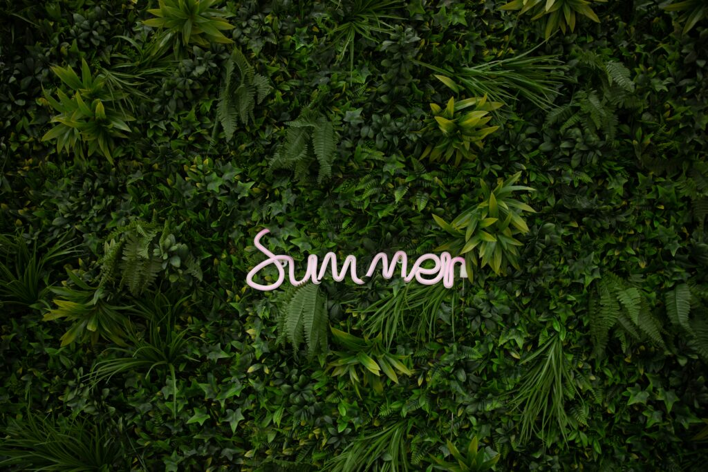 summer photo backgrounds