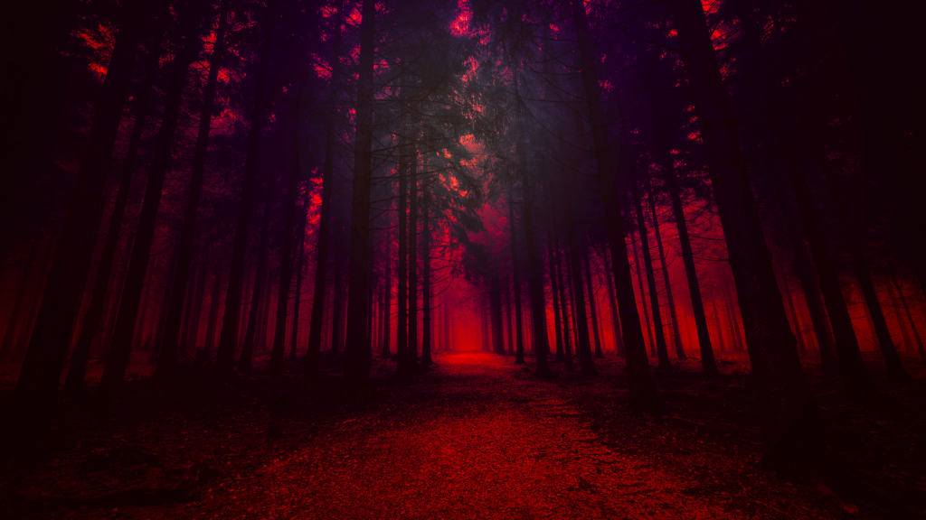 forest red wallpapers